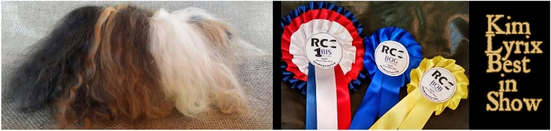 Kim Lyrix, Best in Show 2014 , guinea pig